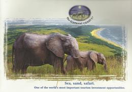 the_elephant_coast